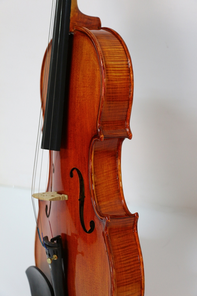 H1A 小提琴Venus虎背紋(高級) 3