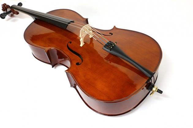 H25B 大提琴附袋(素面) 3