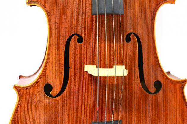 H25C 大提琴附袋(虎背紋) 2