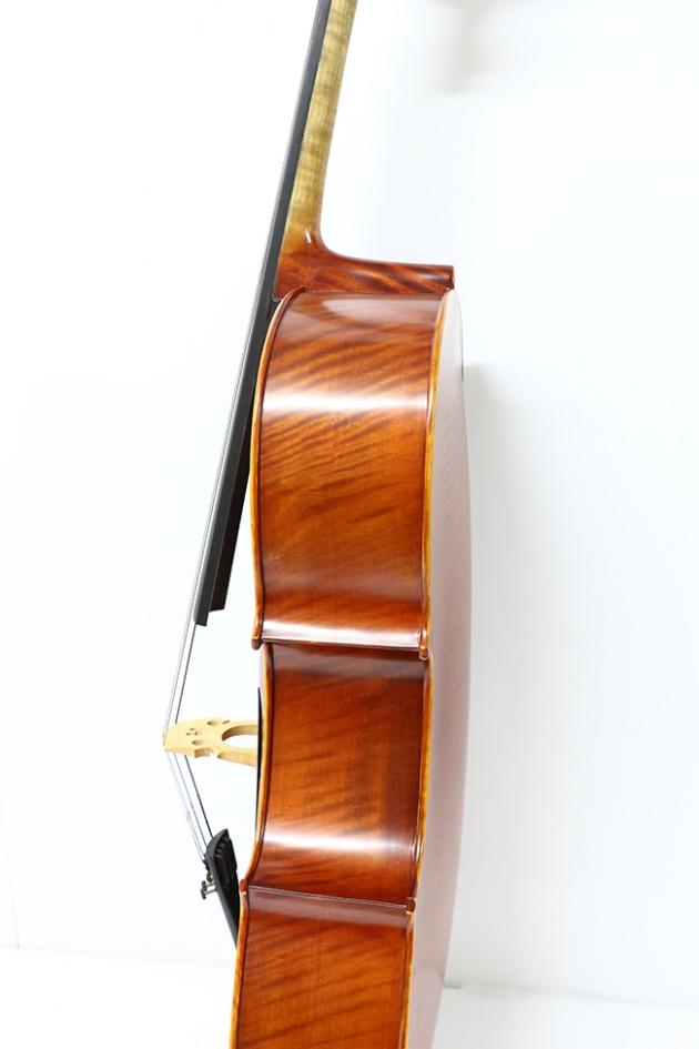 H25C 大提琴附袋(虎背紋) 3